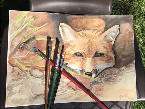 Fox water color painting