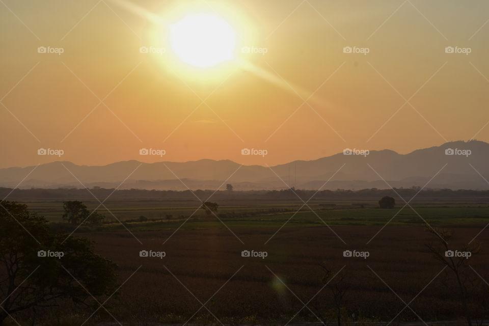 Sun rays under the rice paddy!