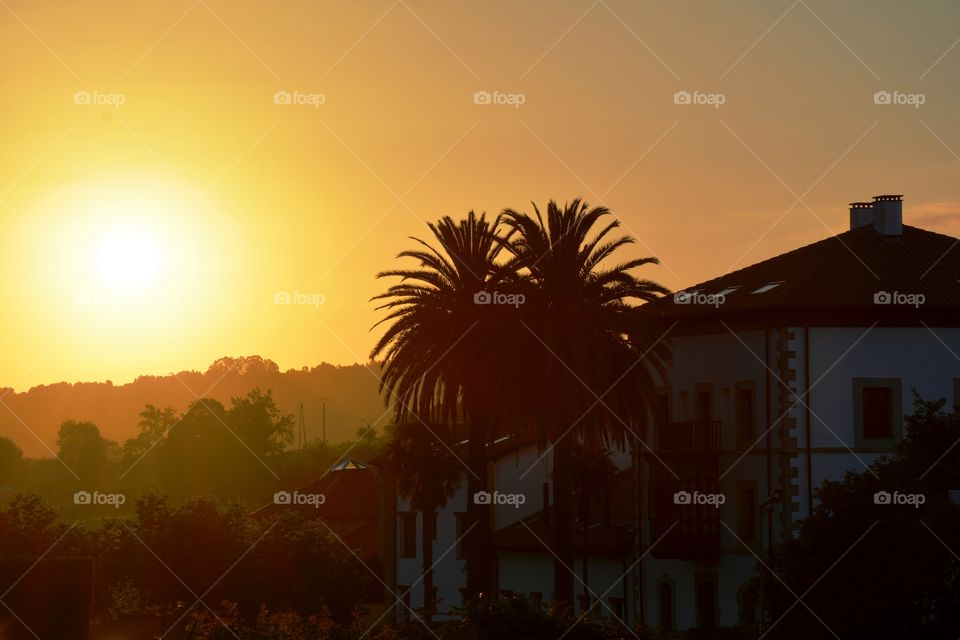 the sunset, two palm trees and one big house