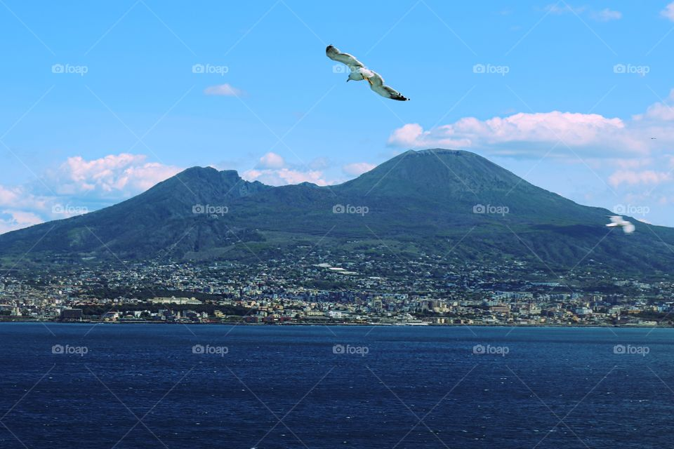 Naples seen from the sea.