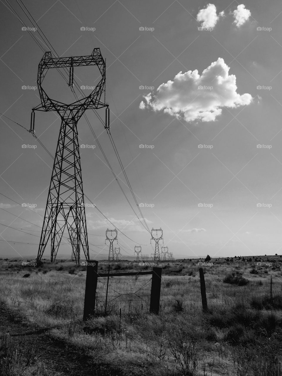 A line of towers carrying electricity to rural Oregon near Shaniko on a fall day.