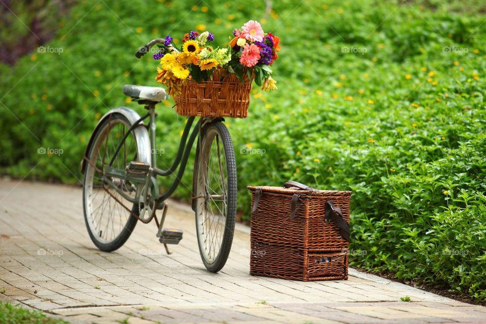Vintage bicycle and flower basket