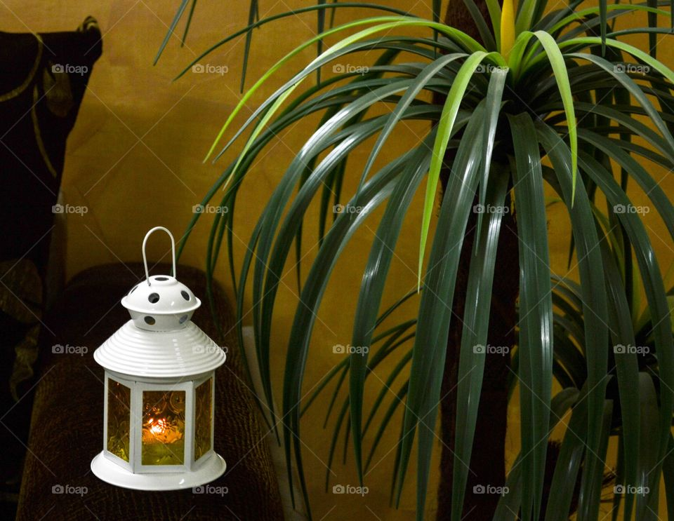 Candle & tree