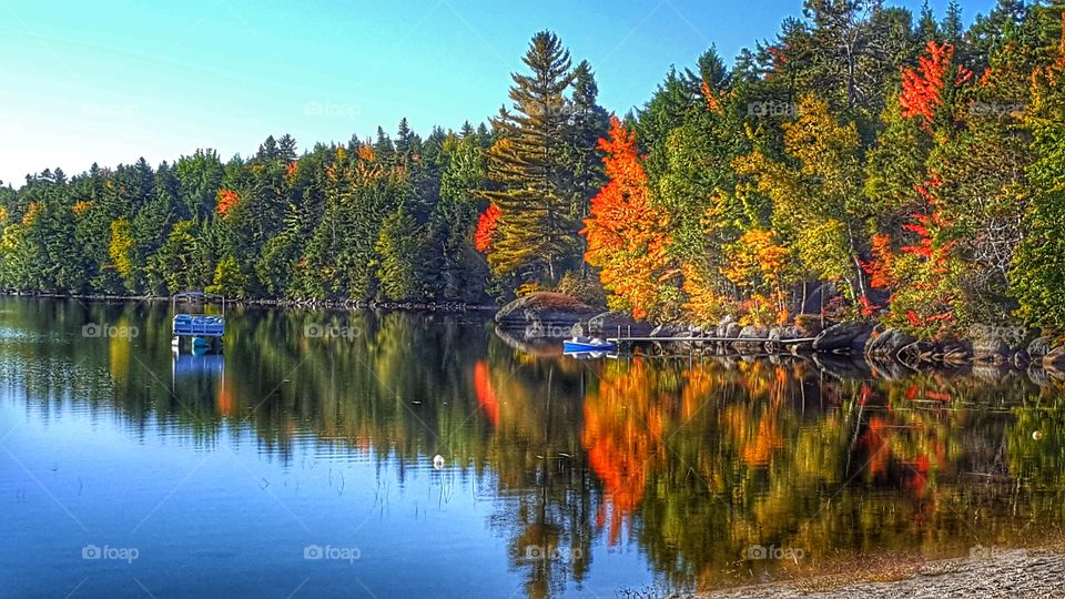 Autumn trees reflecting on lake