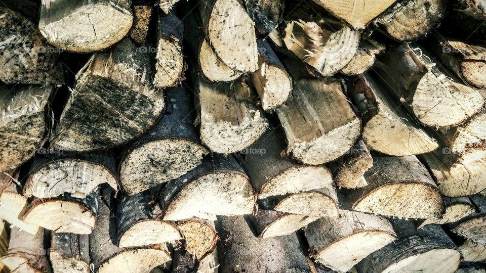 Full frame of wooden log