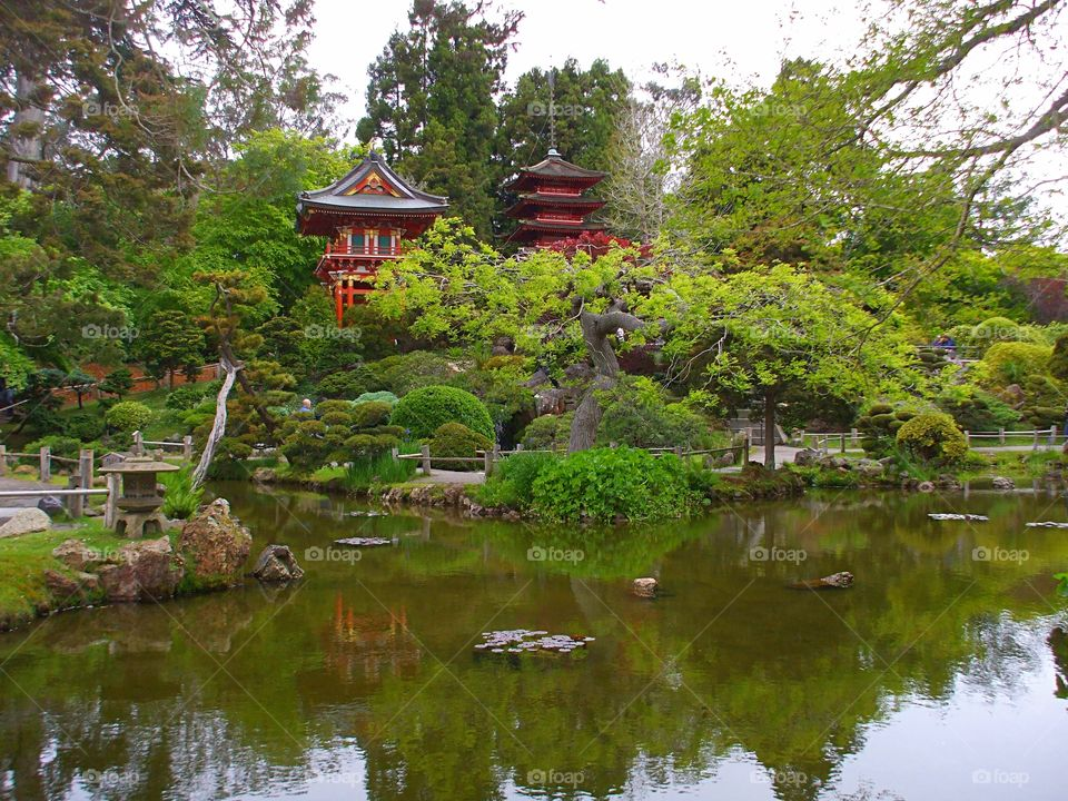 special reflection of japanese garden into a lake