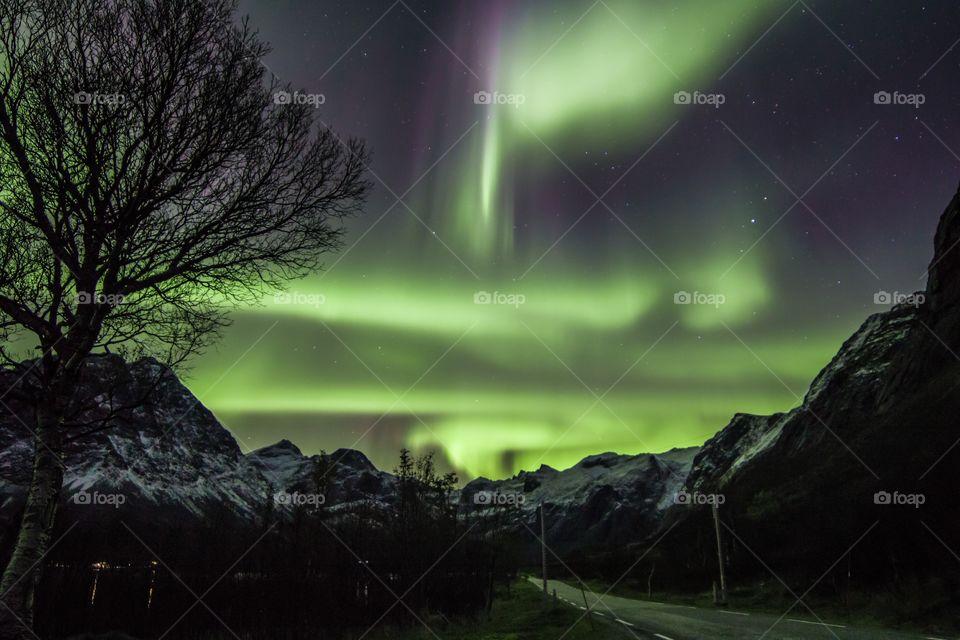 Aurora Borealis, Iceland mountain view
