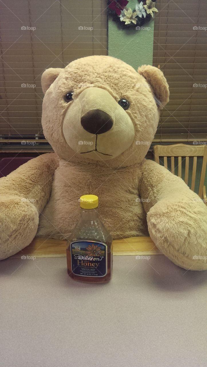 honey...  I'm home. A bear loves his honey