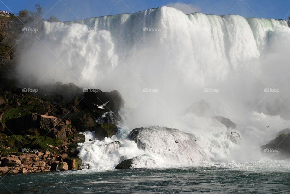 American Falls from the Niagara river