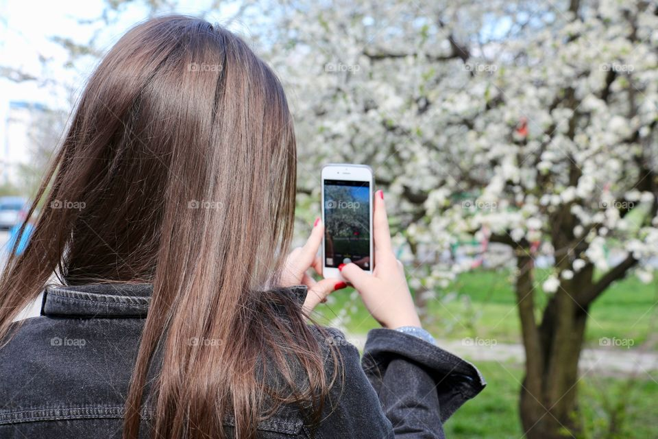Taking picture of beautiful flowering tree