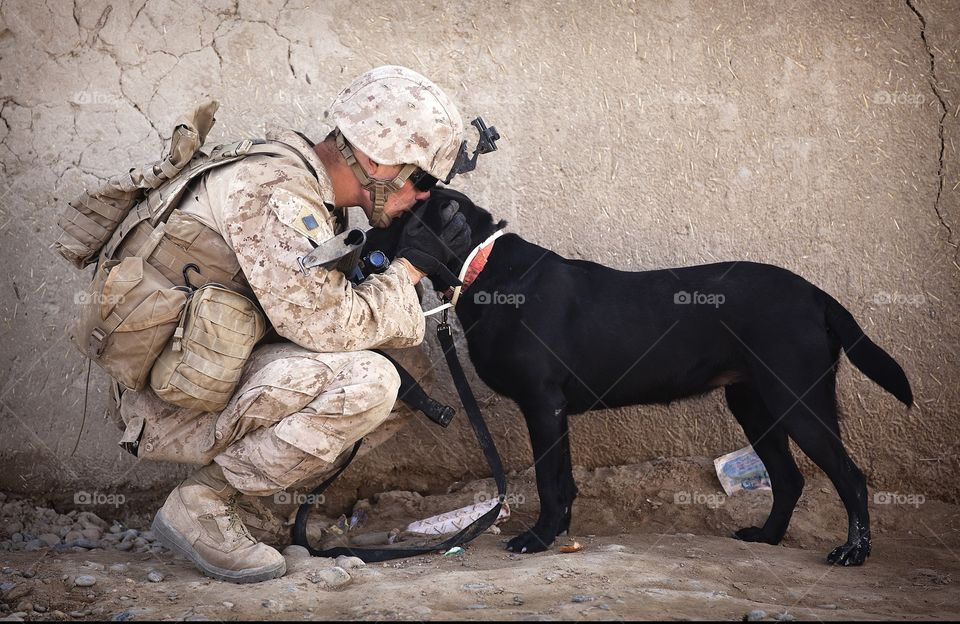 soldier and he's dog