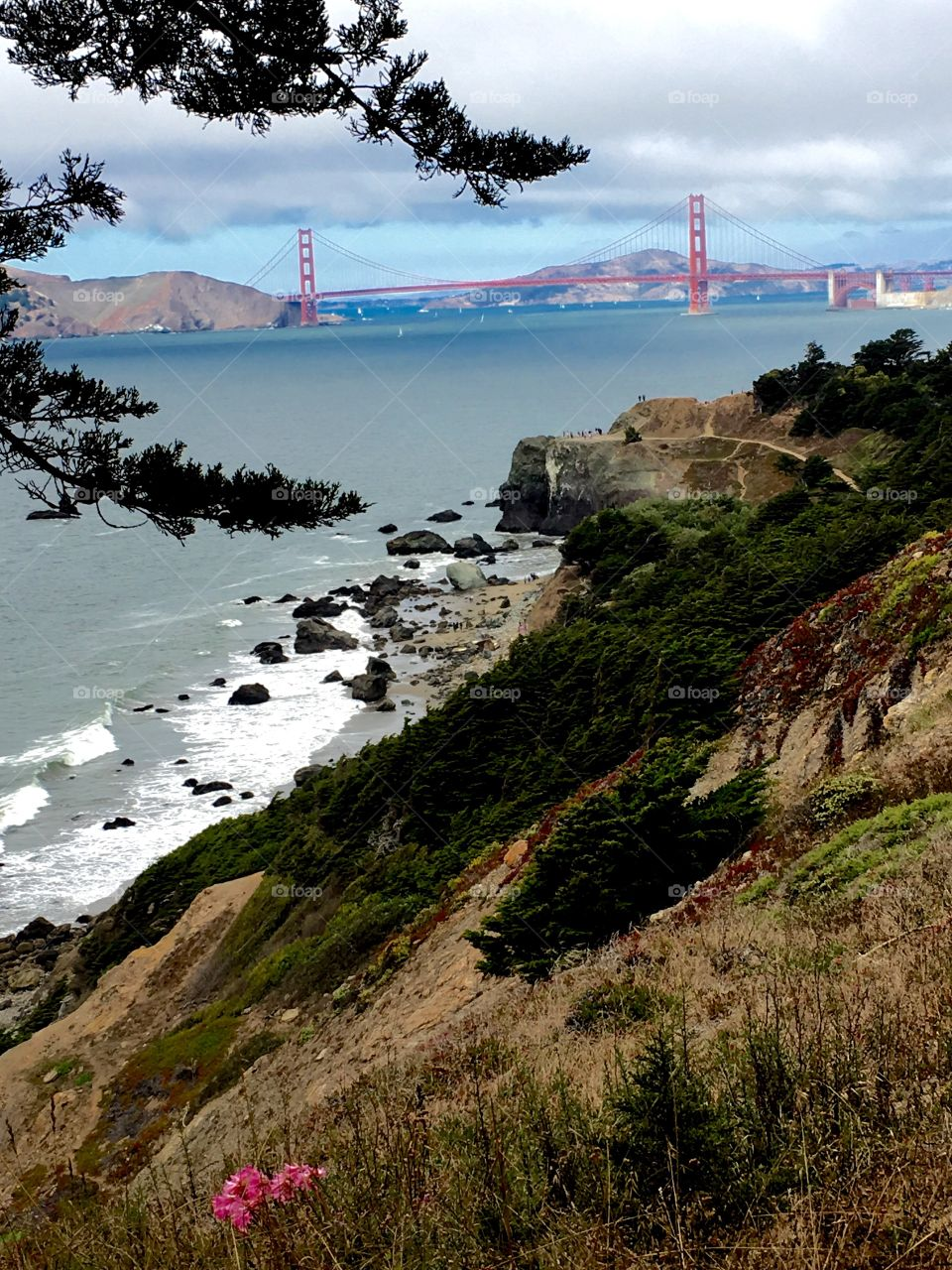 View of Golden Gate Bridge, San Francisco