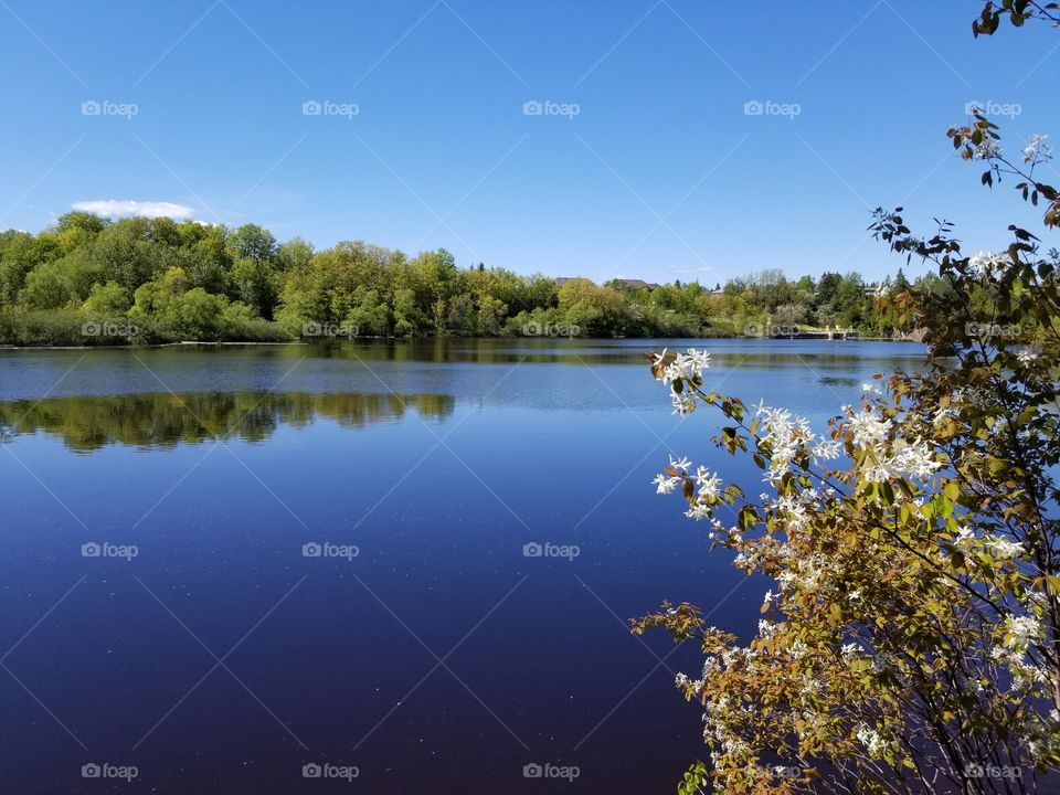 lac au repos en plein soleil